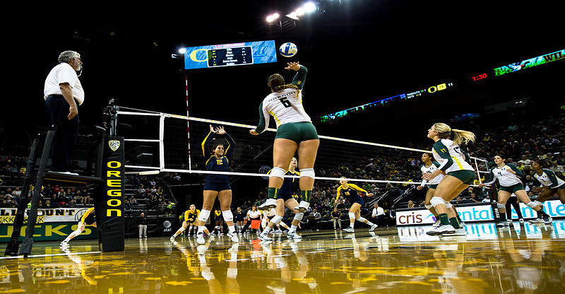 Image for How to Read the Hitter in Volleyball Every Time Article